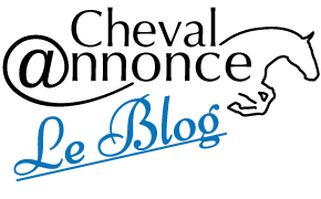 Blog Cheval Annonce