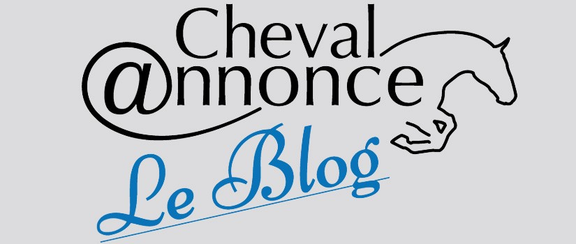 blog chevalannonce
