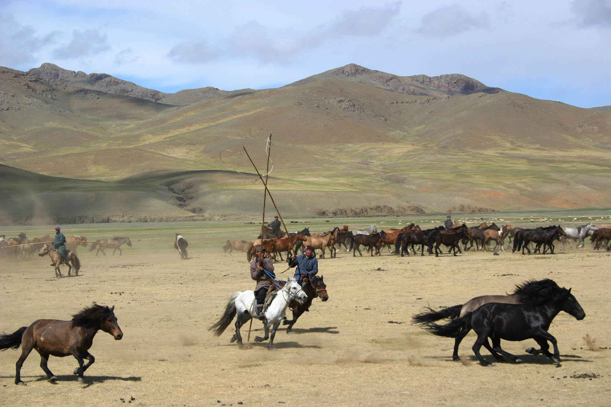 ©Randocheval - Mongolie